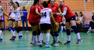 Volley Club Sestese Seconda Divisione